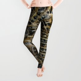 Tree Killing Caterpillars Leggings