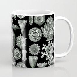 Ernst Haeckel - Hexacorallia Coffee Mug