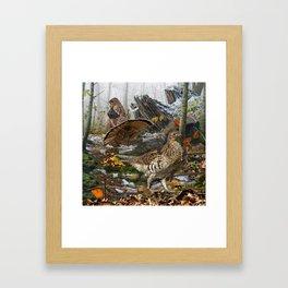 Ruffed Grouse Framed Art Print