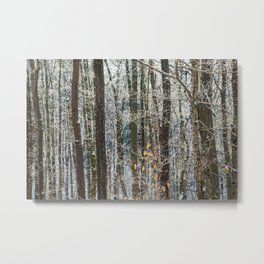 Abstract Winter Woodland Metal Print