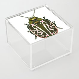 Green, White, Pink Beetle Acrylic Box