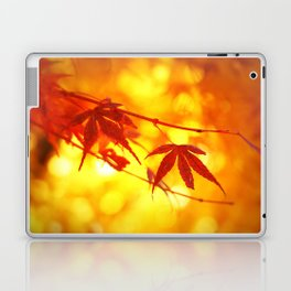 Red Maple in Golden Autumn Laptop & iPad Skin