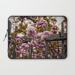 Cherry Blossoms - Japan Laptop Sleeve