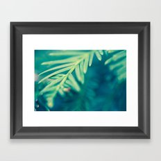 Sequoia Framed Art Print