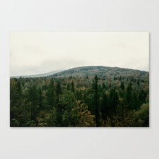 Early autumn, colorful forest and mountains Canvas Print
