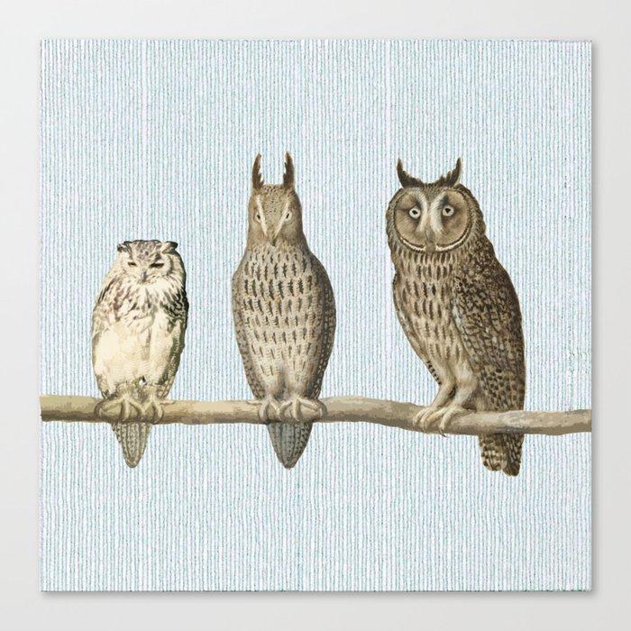 Bonsai and friends Canvas Print