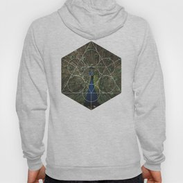 Beautiful Peacock - Geometric Photography Hoody