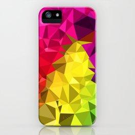 Rainbow Poly Low iPhone Case