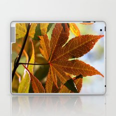 Japanese Maple Leaf Laptop & iPad Skin
