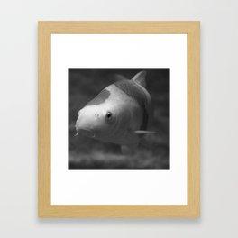 Under Water II Framed Art Print