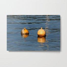 Mooring buoys 016 Metal Print