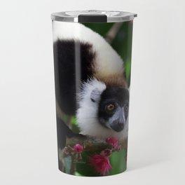 Black and White Ruffed Lemur, Madagascar Travel Mug