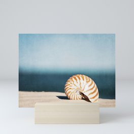 Seashell on Beach Photography, Nautilus Shell Coastal Photograph, Blue Orange Beach Landscape Mini Art Print