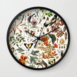 Biology one-o-one Wall Clock