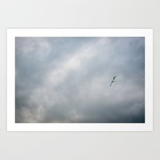 In Flight Art Print