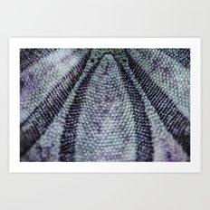 Sand Dollar Macro Abstraction Art Print