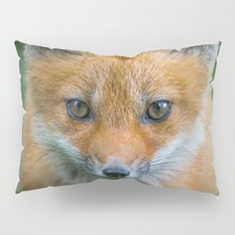 Fox cub Pillow Sham