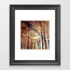 North 3 Framed Art Print