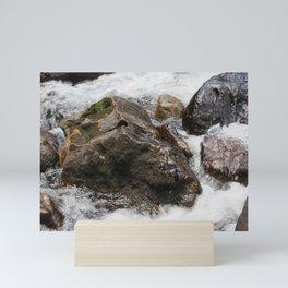 River Rocks Mini Art Print