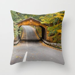 Road in the scenic drive in Sleeping Bear Dunes Throw Pillow