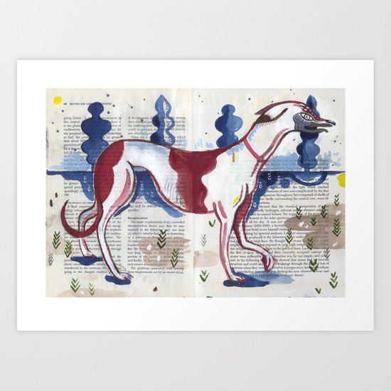 Italian Greyhound Art Print