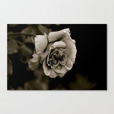 Dry Your Tears Canvas Print