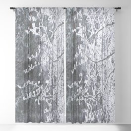 Snowy Tree Branches Winter Scene #decor #society6 #buyart Sheer Curtain