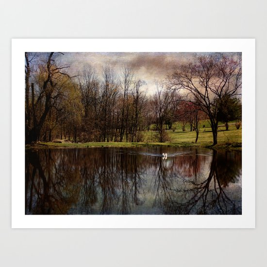 Greeted by the Swan Art Print