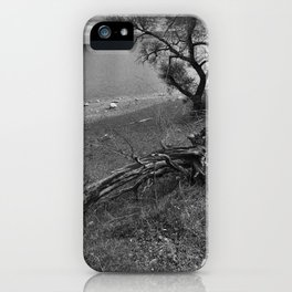Growth and Decay iPhone Case