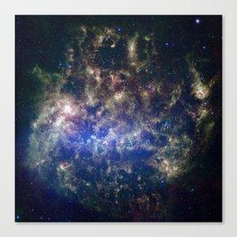 Large Magellanic Cloud, infrared 2 Canvas Print