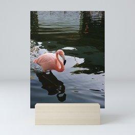 my flamingoo Mini Art Print