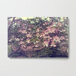 Dogwood Dreams Metal Print