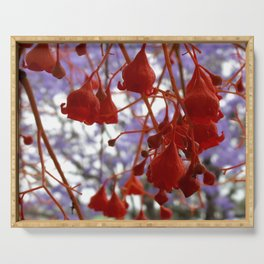 Flame Tree Serving Tray