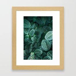 I Beleaf In You II Framed Art Print