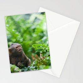 Pair of pygmy monkeys Stationery Cards