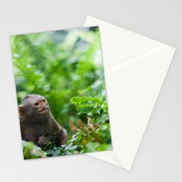 Pair of pygmy monkeys Stationery Cards