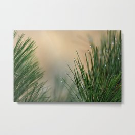 RAINDROPS ON GRASS Metal Print