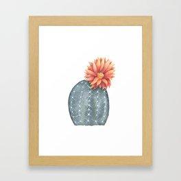 Gymnocalycium Baldianum - Cactus Flower Framed Art Print