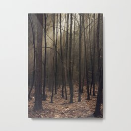 Winter magic forest Metal Print