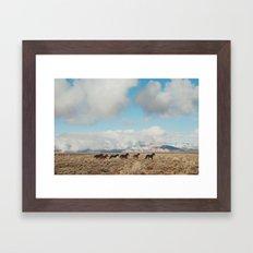 Running Reservation Horses Framed Art Print
