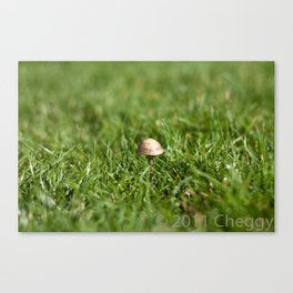 Mushroom sad Canvas Print