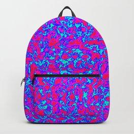 13 Backpack