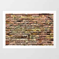 Pink bricks Art Print