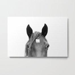 Peeking Horse Metal Print