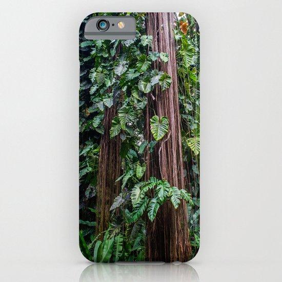 Hawaii Tropical Botanical Garden iPhone & iPod Case