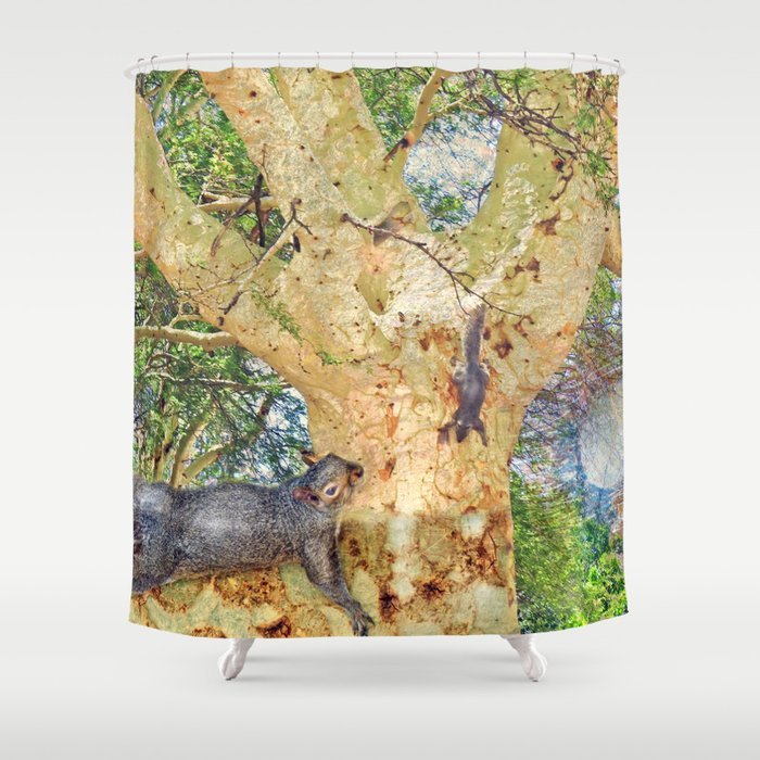 Squirrel Fever Shower Curtain By Crismanart Society6