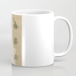A Study of Turtles Coffee Mug