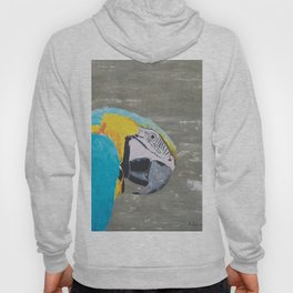 Oscar the Macaw Parrot Hoody