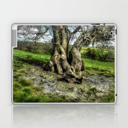 A tree in a pool of light Laptop & iPad Skin