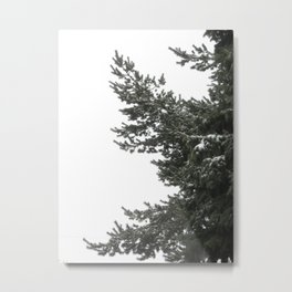 Love Like An Evergreen Metal Print